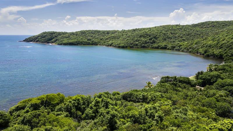 Bungalow Bout Reve Tartane Martinique (6)
