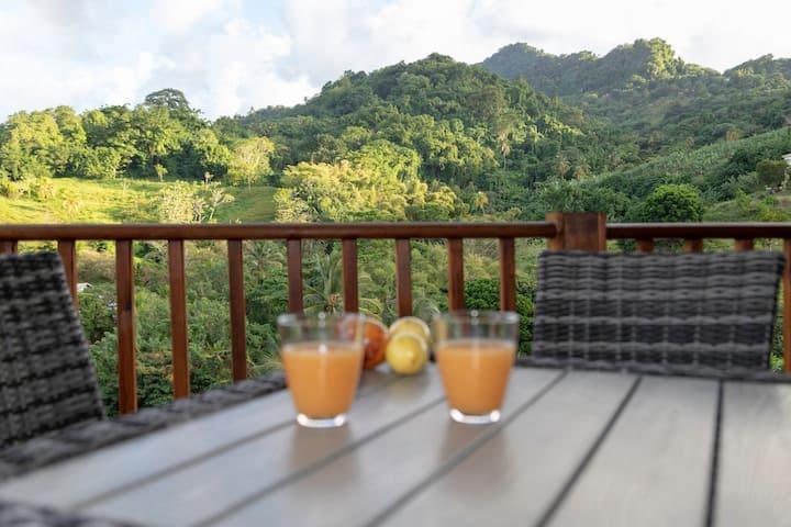 Location Bungalow Sucrerie Le Francois Martinique (4)